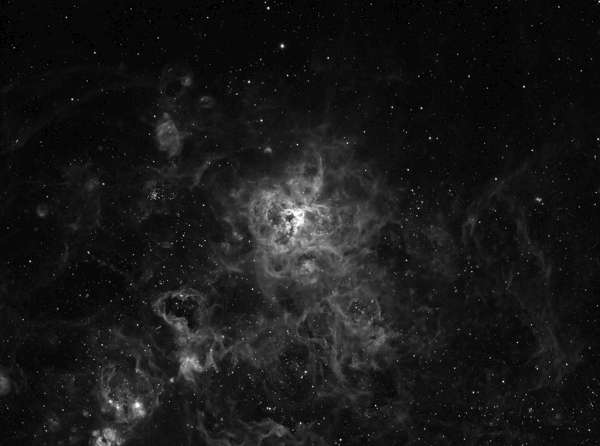 NGC2070 - Tarantula Nebula narrow band